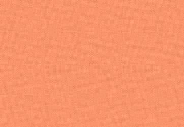 X34 – Light Coral
