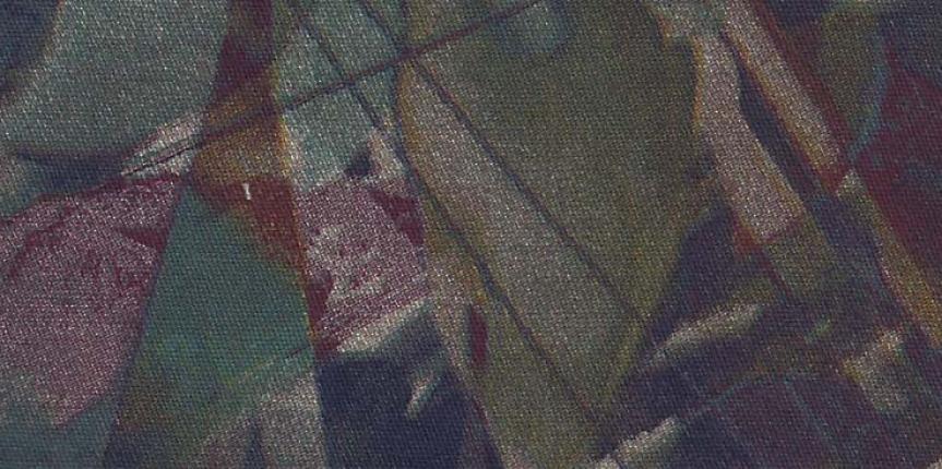 IMG-SANTANENSE – ANNE 5991 08122014