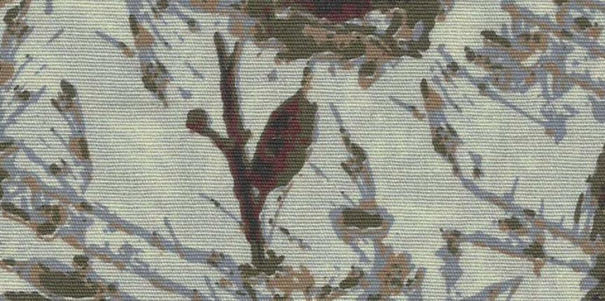 IMG-CATIONIZADOS – ROY 5909 A5 EL