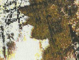 Tecido Estampado 004