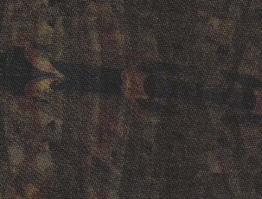 ESTAMPADO SANTANENSE POLYCHROME – CLAIRE 5994 A4 EQ