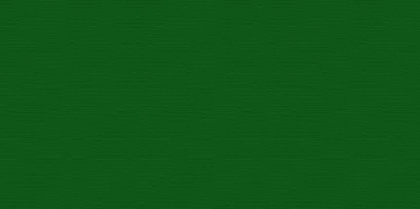 Microfibra Adina 009  Verde Bandeira