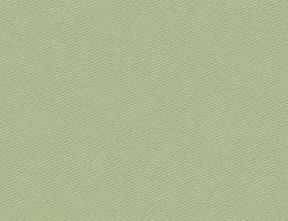 Brim Centauro Paranatex 0710