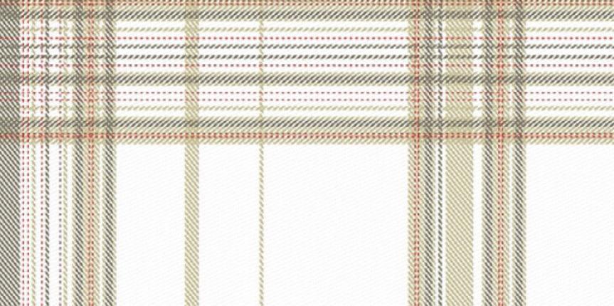 imagem-tecido-paranatex-xadrez-3006