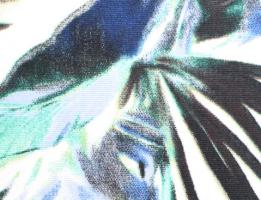 Tecido Estampado Rafael A6-EQ