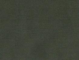 Lycra Verde Musgo