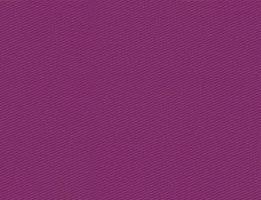 Brim Centauro Paranatex 4040