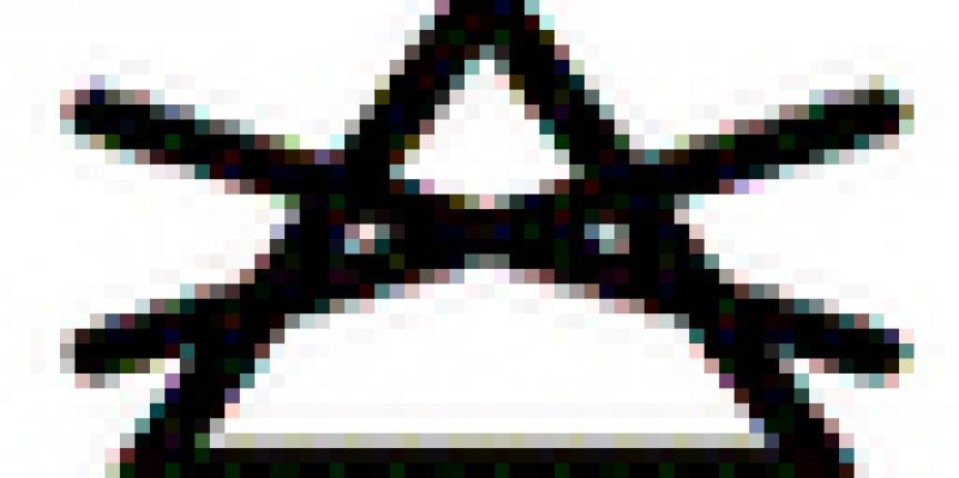 triangulo x