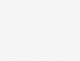 W1B – Branco Hifi