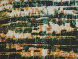 Estampado Vicunha LIZARD 5022