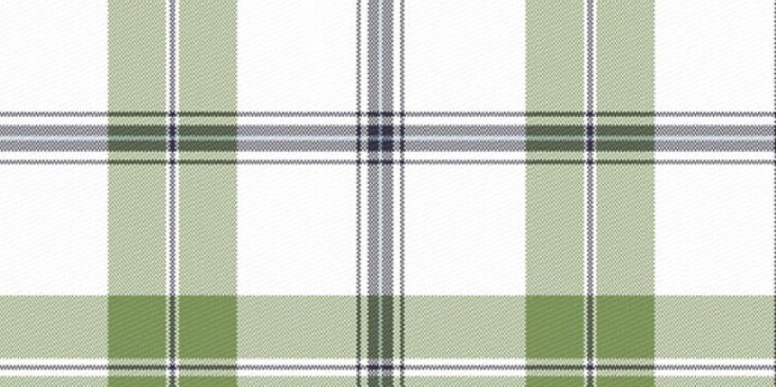 imagem-tecido-paranatex-xadrez-3024